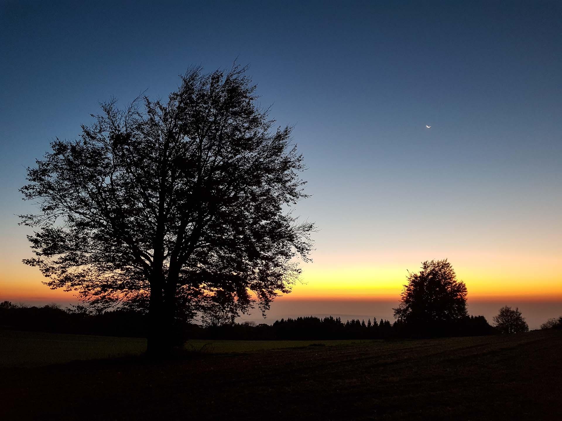Herbstwanderung Schwarze Berge Rhoen